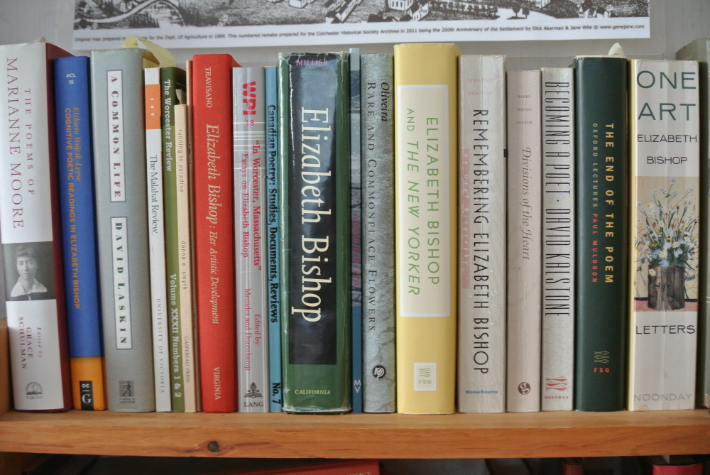 A shelfie in the Elizabeth Bishop House, Great Village, Nova Scotia